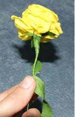 roza iz gofrirovannoi bumagi 13 Розы из гофрированной бумаги своими руками